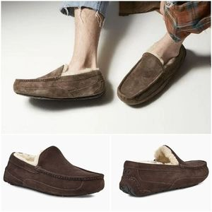 UGG Ascot Men Suede Wool Lined Slippers Espresso